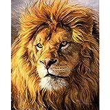 ZXDA Frameless León DIY Pintura por números Animal Pintado a Mano Pintura al óleo Lienzo para Colorear decoración de la Pared del hogar A6 50x70cm