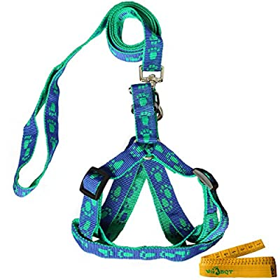 Blue and Green Adjustable Breakaway Dog Cat Pet Harness and Leash Set with Footprint for Dogs Cats Pets in Spring Summer Autumn