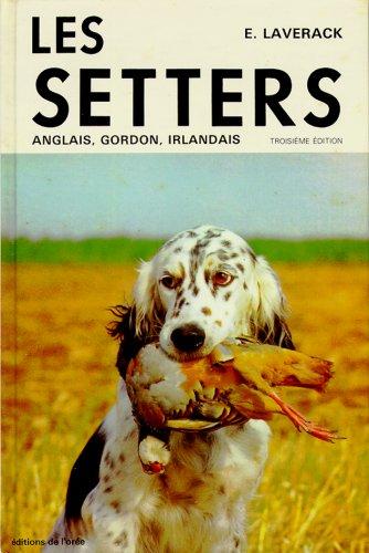 Les Setters anglais, Gordon, irlandais