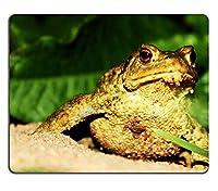 ビーチのカエル砂動物の自然カスタマイズされた長方形のマウスパッド、ゲーミングマウスパッドマウスマット
