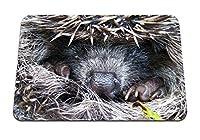26cmx21cm マウスパッド (ハリネズミの棘の鼻の足) パターンカスタムの マウスパッド