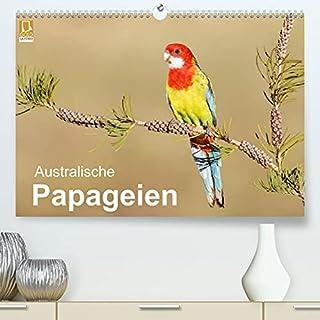 Australische Papageien (Premium, hochwertiger DIN A2 Wandkalender 2022, Kunstdruck in Hochglanz): Erstklassige Fotografien von australischen Papageien (Monatskalender, 14 Seiten ) (CALVENDO Tiere)