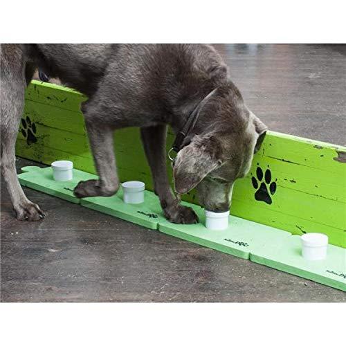 Teamcanin 9101546 Dog Sniffle Dog Hunde Classic Training Set