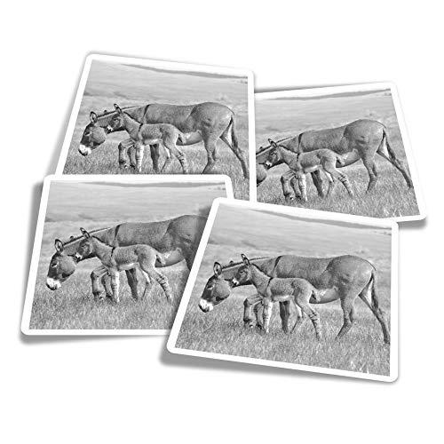 Pegatinas de vinilo (juego de 4) 10 cm – BW – Madre bebé burro potro calcomanías divertidas para ordenadores portátiles, tabletas, equipaje, reserva de chatarra, neveras #36513