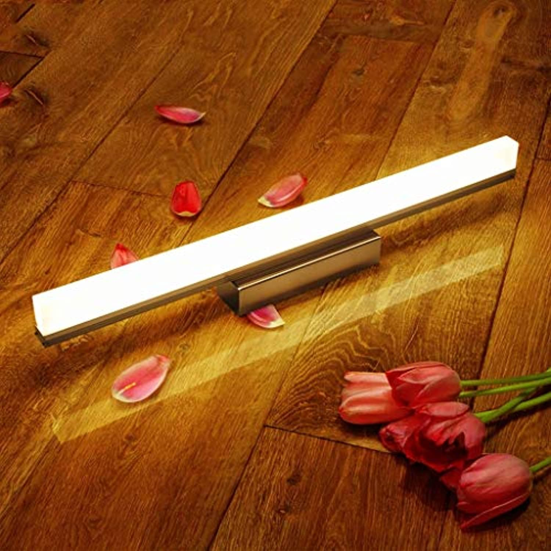 Spiegel vorne Licht wasserdicht Nebel Badezimmer Spiegel Lampe Wandleuchten Einfache und moderne Leuchten LLighting (Farbe  warmes Licht-59 cm)