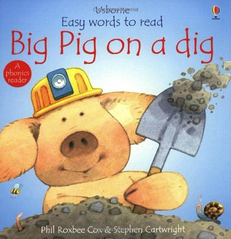 半径所持六分儀Big Pig on a Dig (Easy Words to Read Series)