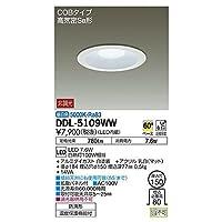 大光電機:ダウンライト(軒下兼用) DDL-5109WW