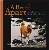 nova scotia duck tolling retriever - book of the breed