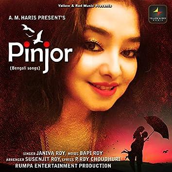 Pinjor