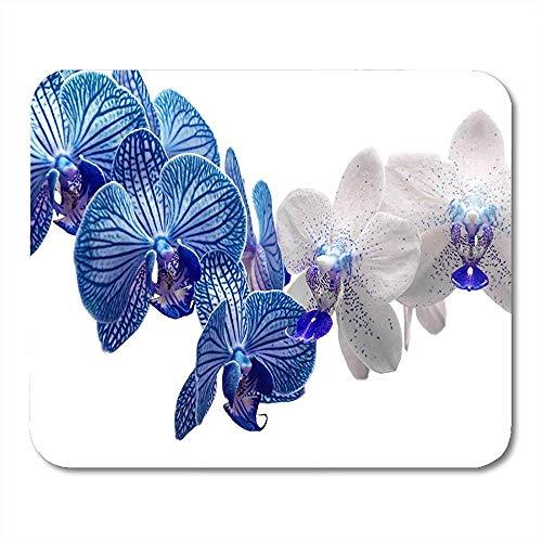 QDAS muismat kleurrijke vaas witte en blauwe orchideeën-bloemen-groene verse muismat voor notitieboek-computer muismatten kantooraccessoires