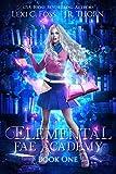 Elemental Fae Academy: Book One: A Reverse Harem Paranormal Romance