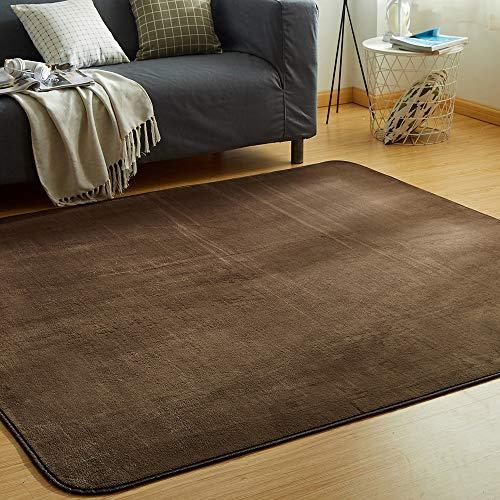 VK Living カーペット ラグ 洗える 滑り止め付 防ダニ 抗菌 防臭 135×185cm(約1.5畳) 12色選べる 1年中使えるタイプ 床暖房 ホットカーペット対応 ふわっと手触り 優しいフランネルラグ 絨毯 ムジ柄・ブラウン
