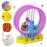 GOOCO Kleines Haustier Spielzeug und Zubehör Kinder elektronisches Spielzeug Hamster Kaninchen...