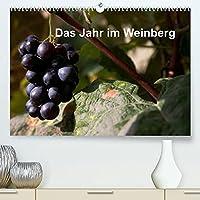 Das Jahr im Weinberg (Premium, hochwertiger DIN A2 Wandkalender 2022, Kunstdruck in Hochglanz): Arbeit im Weinberg (Monatskalender, 14 Seiten )