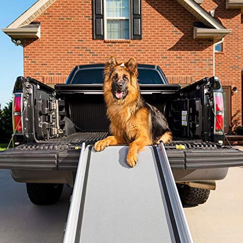 PetSafe Happy Ride rampa telescópica extralarga para perros ⭐
