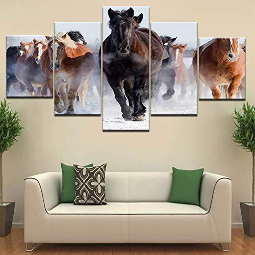 Baobaoshop Moderne Leinwand Malerei Wohnzimmer Wandkunst modulare HD-Druck Bilder 5 Tier Pferderasse Poster Wohnkultur Rahmenlos -30x40 30x60 30x80cm