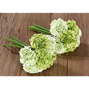 Nument Silk Artificial Carnation Flowers Real Touch Flowers 2 Bouquets for Wedding Bridal Bridesmaid Home Decoration (Green)