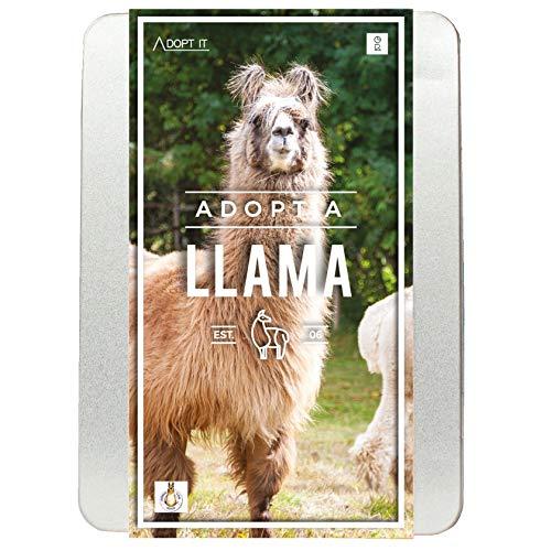 Gift Republic Adopt A Lama kit, Multi
