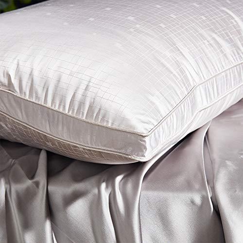 DCGSADFW Almohada de plumón de Ganso de Seda, de algodón, Almohada Individual para Adulto, 95 Almohadas de plumón de Ganso Blanco