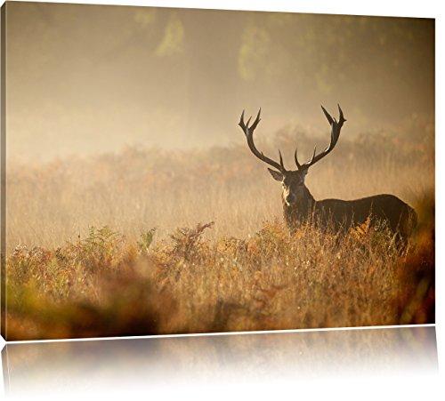 Rotwild Hirsch im Nebel, Format: 120x80 auf Leinwand, XXL riesige Bilder fertig gerahmt mit Keilrahmen, Kunstdruck auf Wandbild mit Rahmen, günstiger als Gemälde oder...