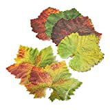 Parchment Grape Leaves Plate & Table Decoration 20-leaves French Tradition Decor
