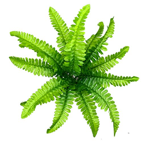 Cratone Kunststoff Kunstrasen Persian Gras grün Künstlihche Farn Blätter Pflanze Grünpflanzen Dekoration für Füllfederhalter Fish Tank Aquarium Home Garten Hochzeit