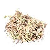 Sphagnum Moss Secco Giardino Idratante nutrizione organico fertilizzante per Orchidea Phalaenopsis Musgo Sphagnum 12L