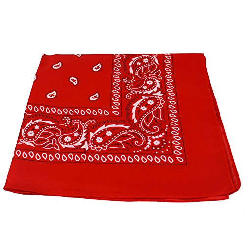 Alsino Zandana Foulard Bandana Motif cachemire 100 % coton, Rouge,54 cm x 54 cm