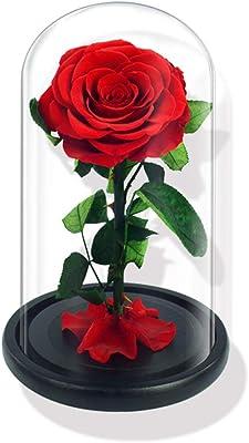 美女と野獣のバラ、ガラスカバー付き永遠のバラギフトボックス、家を飾るため、結婚式の贈り物、ロマンチックなバレンタインデー、母の日ギフト、赤