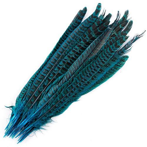 Surepromise 20 STK Fasanenfedern 25-30cm Fasan Feder Blau Echte Vogelfeder Schmuckfedern Hutfeder Hutschmuck