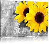 schöne Sonnenblumen auf Holztisch schwarz/weiß Format: