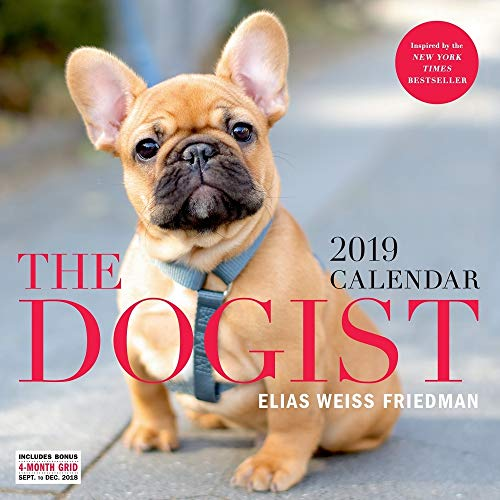 Price comparison product image The Dogist Wall Calendar 2019