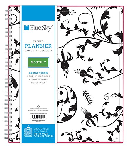 "Blue Sky 2017 Monthly Planner, Wire-O Binding, 8"" x 10"", Analeis (19570)"