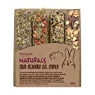 Rosewood Naturals Small Animal Treats Four Seasons Grain-Free Sticks XXL