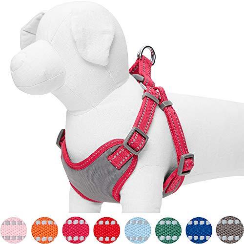 Umi. by Amazon - Pastellfarbenes, reflektierendes Hundegeschirr, Brustumfang 45-53,5 cm, Beerenrot, Small, verstellbares Geschirr für Hunde