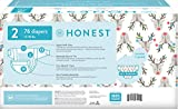 The Honest Company Club Box Disposable Diapers with True Absorb Technology, Hey Rudolph, Size 2, 76Count