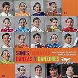 Danza a la Manera Huasteca