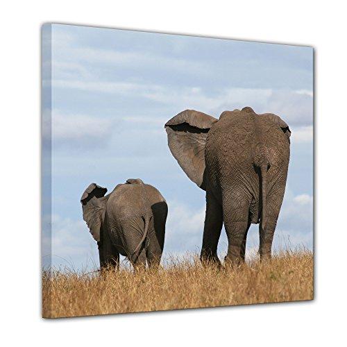 """Bilderdepot24 Cuadros en Lienzo""""Elefante madre y el niño"""" 100x100 cm - listo tensa, directamente desde el fabricante"""