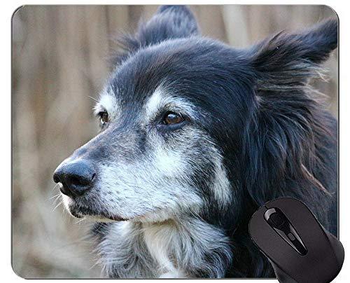 Mausunterlage gedruckt mit Narzissen-australischem Schäferhund, Hundemausunterlage mit genähtem Rand