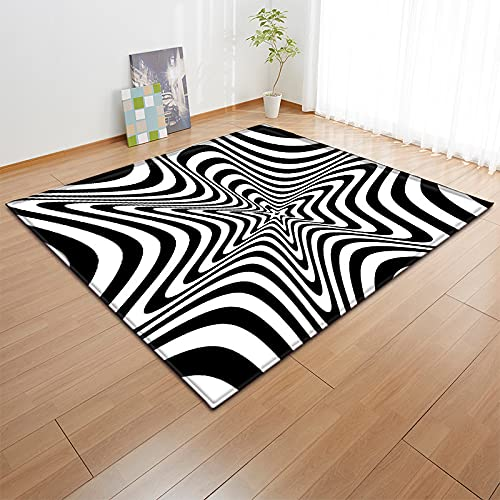 Washable Carpet Non Slip Mats for Chair Bed Sofa Floor Abstract vision black and white large carpet living room floor mat