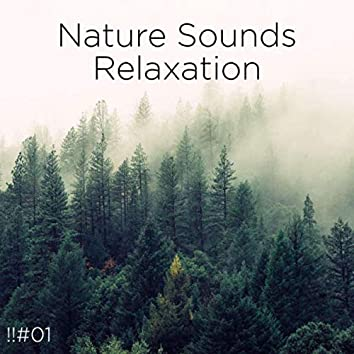 !!#01 Nature Sounds Relaxation