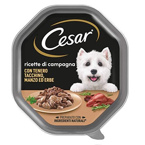 Cesar Ricette di Campagna Cibo per Cane con tenero Tacchino, Manzo ed Erbe 150 g - 14 Vaschette