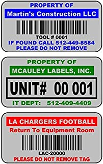 """2000 2"""" x 1"""" Blue, Red, or Green Custom Mat Silver Metalized Polyester Asset Tags Featuring Easy""""Do It Yourself Design"""". C..."""