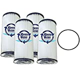 WPCFF975, FM-BB-10-20, ECP20-BB, W20CPHD, FXHSC AND WHKF-WHPLBB Alternative 20 Micron Water Filter Replacement Cartridge Qty(4) and O-Ring Qty(1) by KleenWater