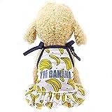 Womdee Ropa de Mascota, Lindo de la Fruta impresión Perro Camisas | Cachorro Adorable Parejas Vestido de Ropa para Gatos pequeños Mascotas Perros, tamaños