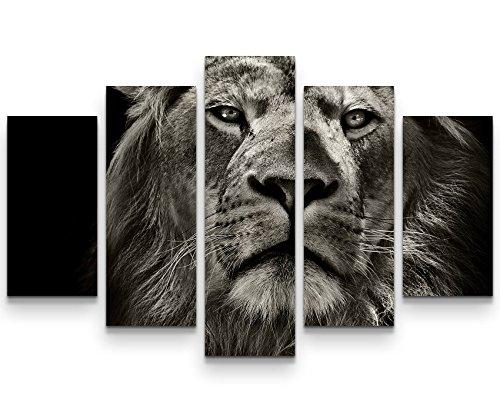Paul Sinus Art Leinwandbilder | Bilder Leinwand 160x100cm Portrait eines Löwen