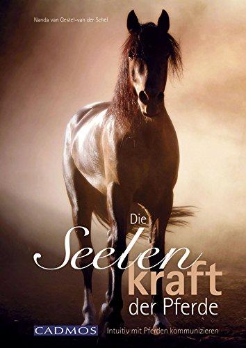 Die Seelenkraft der Pferde: Intuitiv mit Pferden kommunizieren (German Edition)