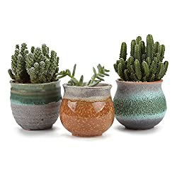 [Small Ceramic Planter] - Made of Top-Quality ceramic, light weight and durable. Perfect for holding miniature succulent, herbs and cactus, aloe plants. [Scientific Design] - Wide mouth plant pot with a small drainage hole at the bottom,are good for ...
