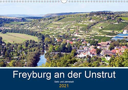 Freyburg an der Unstrut (Wandkalender 2021 DIN A3 quer)