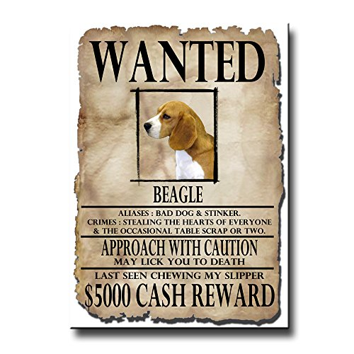 Beagle Wanted Poster Fridge Magnet Funny
